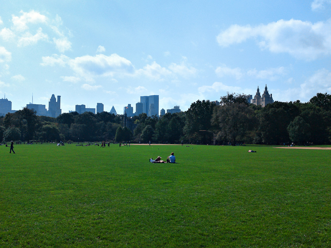 Central Park, November 28, 2009.