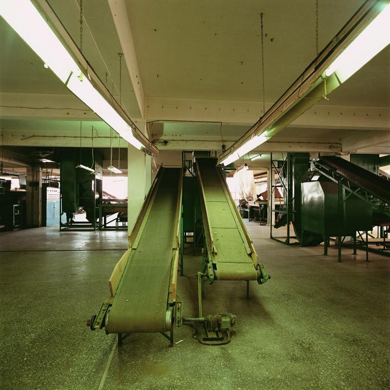 P. Theodoridis factory, Kavala, September 2006.